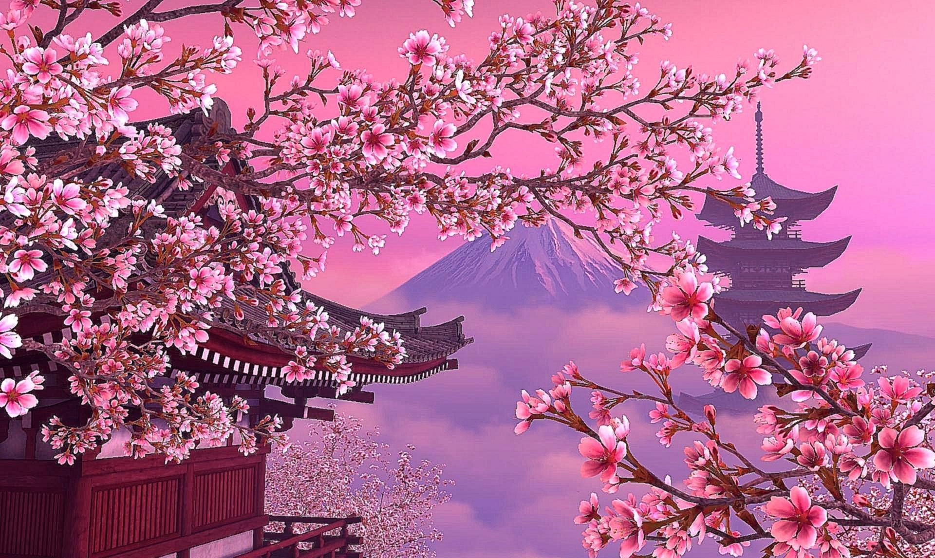«Здравствуй, Япония!»